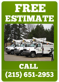 SharpCut-Tree-Care-free-estimate