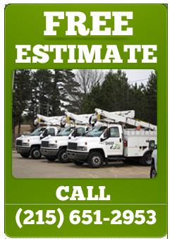 SharpCut-Tree-Care-free-estimate