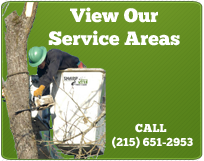 Sharp Cut Tree care view our service area