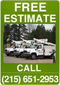 Free Tree Estimate Warminster