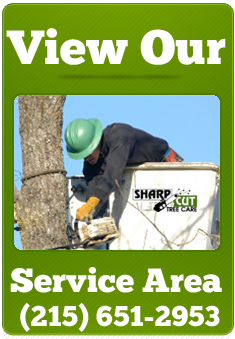View Our Service Areas